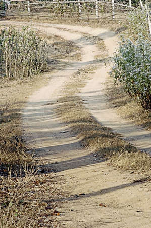 dirtroad: A dry dusty lane in rural Thailand Stock Photo
