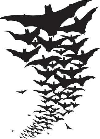 vampire bats: Vector design of flying bats