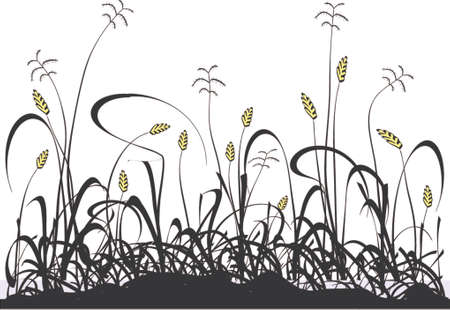 paddock: Vector design of a grassy meadow