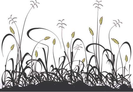 grass verge: Vector progettazione di un prato erboso