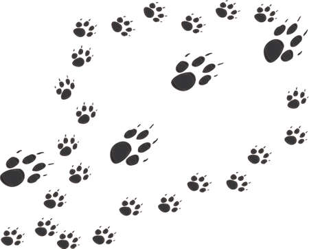 trails: Vector design of mother and puppies paw prints