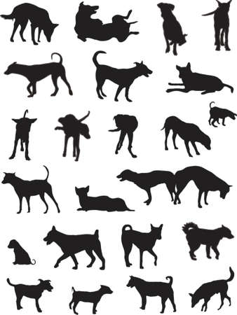 mongrel: Set of vector silgouettes of generic dogs from Bangkok strays Illustration
