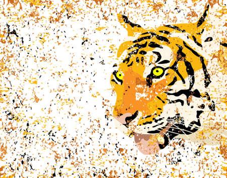 Vector ilustración de un tigre \ 's cabeza con grunge
