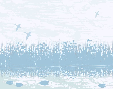 Vector illustration of birds in a natural wetland