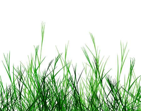 Conception editable de premier plan de vecteur d'herbe rugueuse