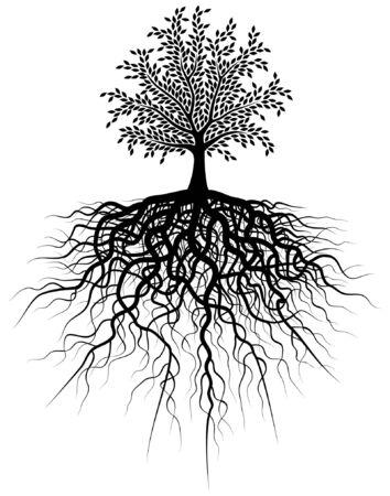 Editable ilustración vectorial de un árbol y sus raíces