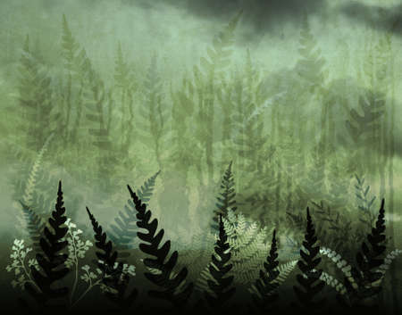 frond: Background illustration of green ferns and grunge