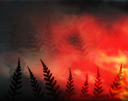uncontrolled: Abstract illustration of a forest fire and ferns Stock Photo