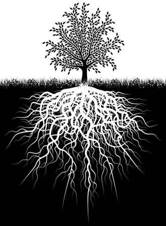Editable Vektor-Illustration von einem Baum und seine Wurzeln