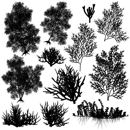 Set van editeerbaar vector zee koraal silhouetten Vector Illustratie