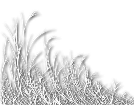 sway: Illustration of long white grass with shadows