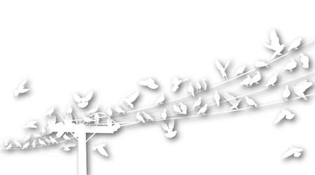 telegraph: Silhouettes of cutout white birds roosting on telegraph wires