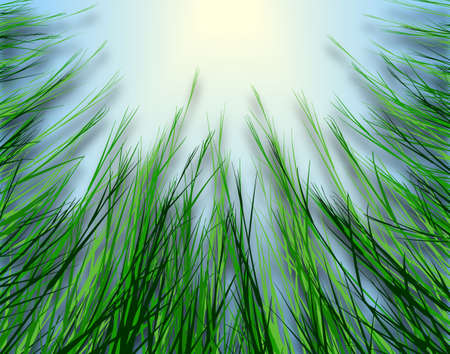 grass verge: Illustrated design looking up through rough grass