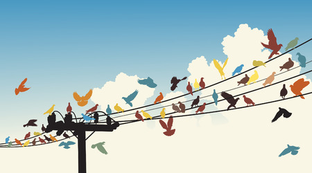 sagome di uccelli colorati appollaiarsi su telegrafo fili Vettoriali