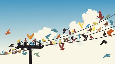siluetas de coloridos pájaros posándose sobre cables de telégrafos Ilustración de vector