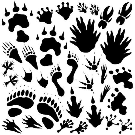 Set of editable monster or alien footprints