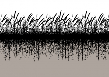 Editable vector silhouette of a grassy meadow with underground roots 版權商用圖片 - 21783816