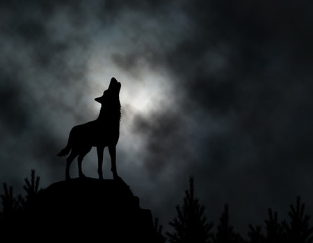silhouette of a howling wolf with moonlit clouds background made using a gradient mesh