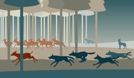 illustration of a pack of wolves hunting deer in a forest
