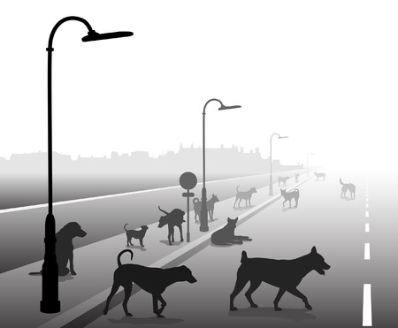 Editable vector illustration of a motley group of stray dogs on a lonely road