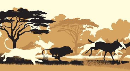 EPS8 editable vector cutout illustration of lions chasing a herd of wildebeest Ilustração