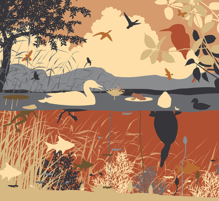 EPS8 editable vector illustration of diverse wildlife in a freshwater ecosystem with all figures as separate objects