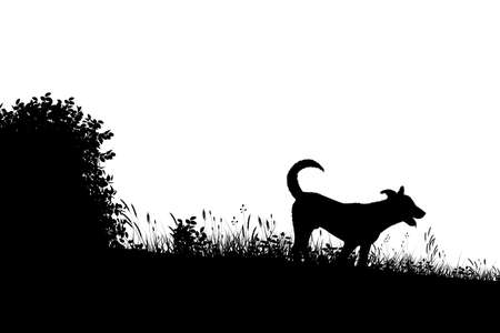 Editable vector silhouette of a young dog in a grassy meadow with dog as a separate object