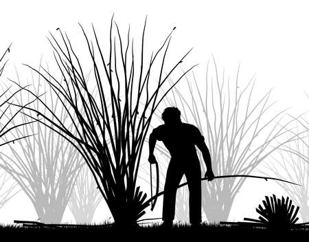 Editable vector cutout illustration of a man coppicing trees  Stock Illustratie