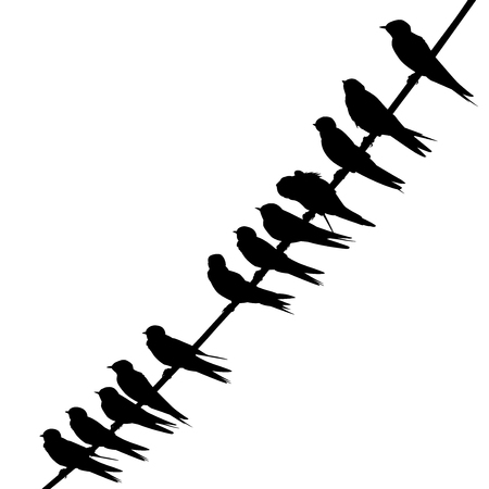 Editable vector silhouette of swallows perched on a wire with birds as separate objects