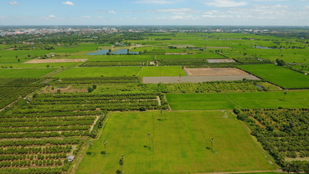 High angle photo showing Thai farming area