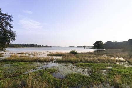 civilisation: Minneriya tank is a reservoir in Sri Lanka made by an old civilisation. King Mahasena ordered a dam build across the Minneriya River. Minneriya, Sri Lanka - 4 February, 2016