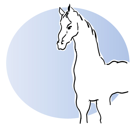 White horse. vector illustration of a white horse with blue background.