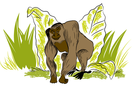 Big gorilla. illustration of leafs and standing gorilla in the jungle.