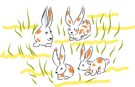 Dappled Bunnies. Four bunnies in the lawns and herbs.Bunnies in the nature. Çizim