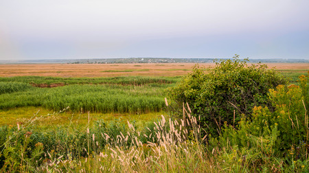 lowland: Beautiful view of the plain field in lowland during the summer evening.Village landscape. Stock Photo