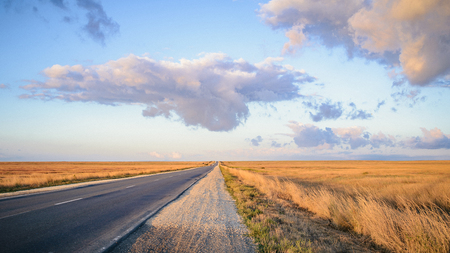 Carefree driving on a bright sunny day. Early mornng, blue sky with clouds. Ideal highway through boundless yellow meadows.