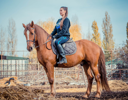 Young beautiful brunette girl rides a horse on a warm and sunny autumn day. Portrait of a pretty young woman on the horse, wearing tall boots and gloves. Reklamní fotografie