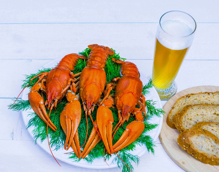 Boiled red crawfish on a white plate with green fennel on a wooden background. Tasty red steamed rawfish closeup on a wooden table, seafood dinner, nobody. Copy space for your text. Stock Photo