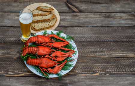 Boiled red crawfish on a white plate with green fennel on a wooden background. Tasty red steamed crawfish closeup with glass of beer on wood table, seafood dinner, nobody. Copy space for text. Stock Photo