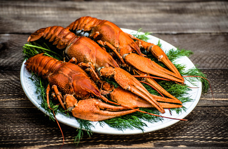 Boiled red crawfish on a white plate with green fennel on a wooden background. Tasty red steamed rawfish closeup on a wooden table, seafood dinner, nobody. Stock Photo