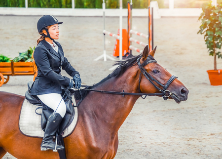 Beautiful girl in uniform and bay dressage at a jumping competition. Equestrian sport background. Girl with sorrel. Stock Photo