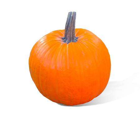 Pumpkin isolated on white background. Fresh and orange.Top view of a pumpkin isolated for Halloween, Thanksgiving day, other autumn Holidays. Banco de Imagens