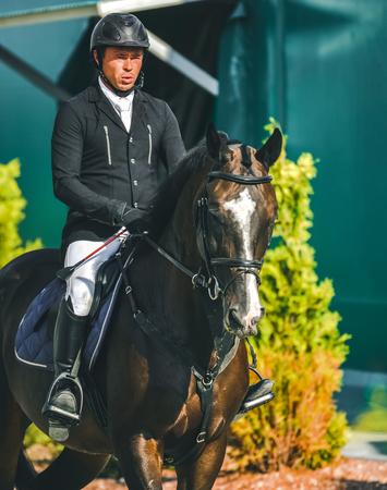 Showjumping competition, bay horse and rider in black uniform performing jump over the bridle. Equestrian sport background. Beautiful horse portrait during show jumping competition. 免版税图像