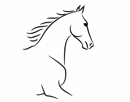 Horse head graphic logo template, vector illustration on white background. Stylish horse head outline for stable, farm, club race design. Racer or rearing mustang and running stallion for equestrian sport races or competition rides and contest. Ilustracja