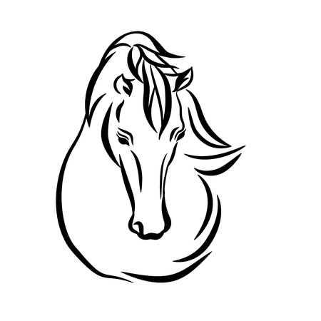 Horse head graphic, illustration on white background. Stylish horse head outline for stable, farm, club race design. Racer or rearing mustang and running stallion. Stock Photo