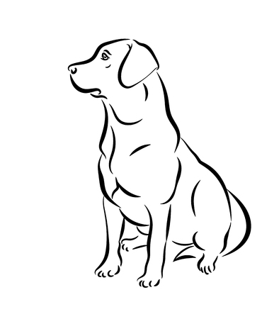 Labrador vector illustration. Black and white outline of a sitting dog isolated on a white background.