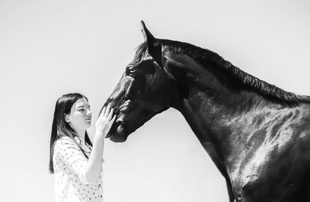 Pretty young woman and gorgeous fullbred stallion. Fashion portrait of brunette model in equestrian uniform.