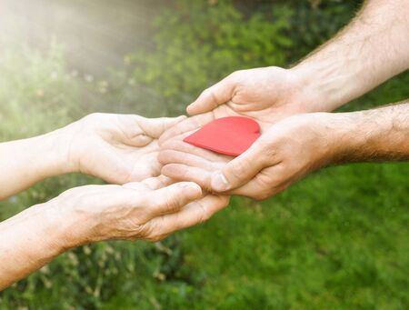 Hands with a red heart closeup.Young man gives a red heart to elderly woman. Human emotions, old people health. Love, compassion, mother and son. Valentin, mothers day. Green blurred background, sun rays. Reklamní fotografie