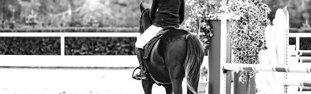 Beautiful girl on black horse in jumping show, equestrian sports, black and white. Horse and girl in uniform going to jump. Horizontal web header or banner design.