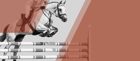 Horse and rider, black and white banner or header, billboard, duo tone. Beautiful white horse portrait during Equestrian sport show jumping competition, copy space for your text. Banque d'images